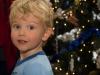 Jasper at Christmas